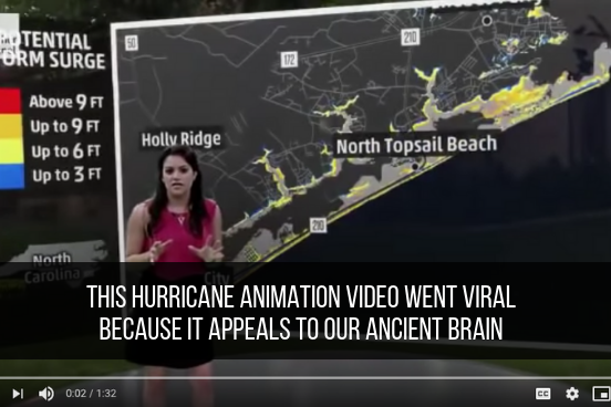 This Hurricane Animation Video Went Viral Because It Appeals To Our Ancient Brain